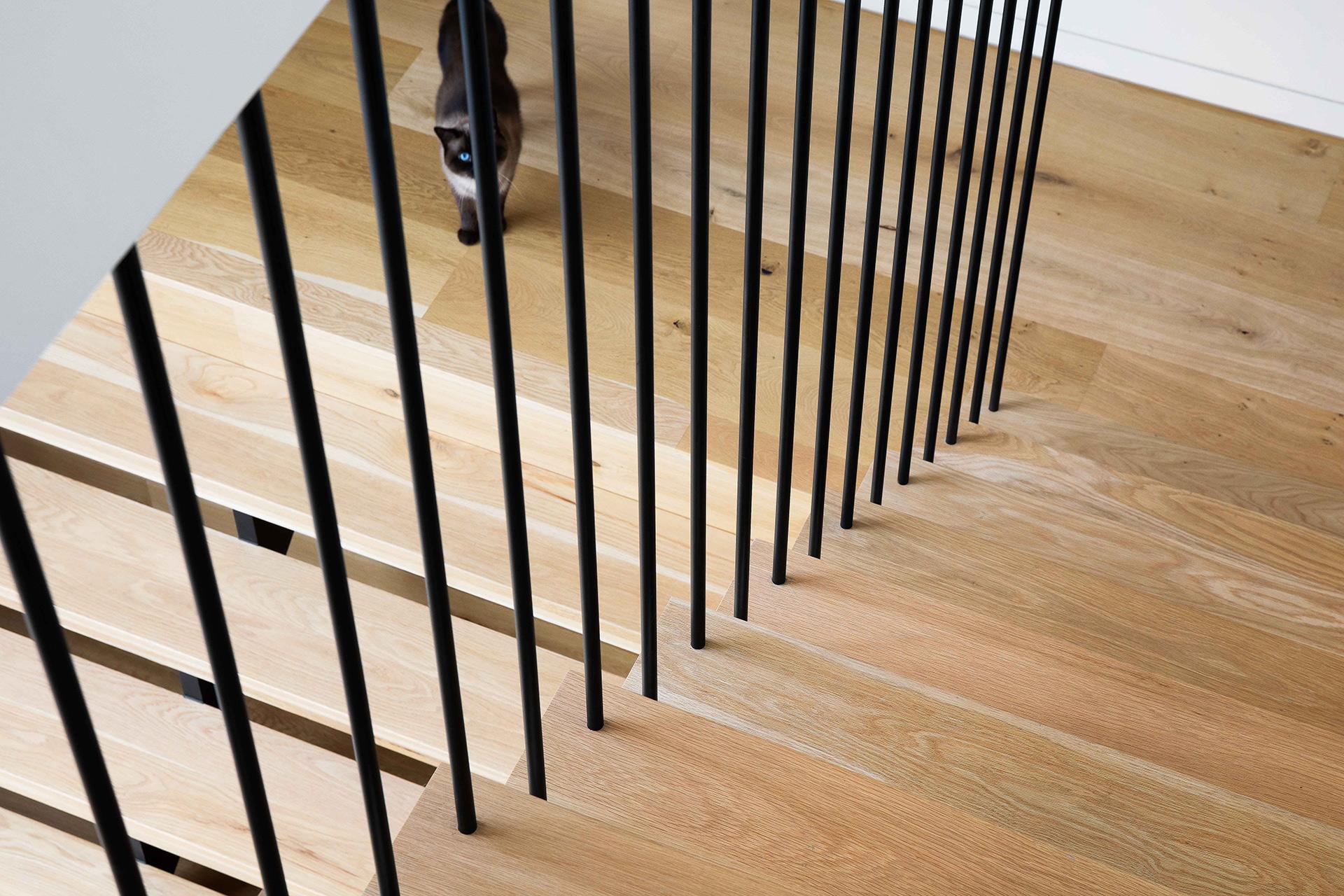 northcote-house-interior-design-staircase-batterns-cat-ckairouz-architects